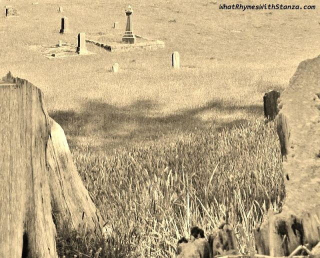 23 graveyard6